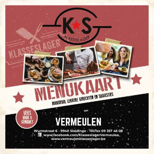 Vermeulen_2019-pdf